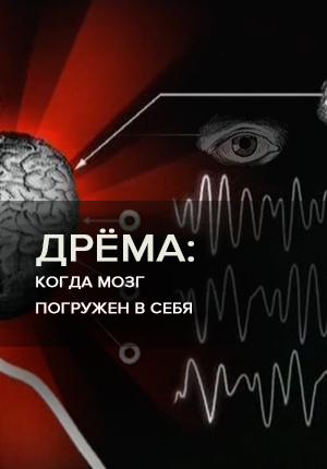 Дрёма: Когда мозг погружен в себя