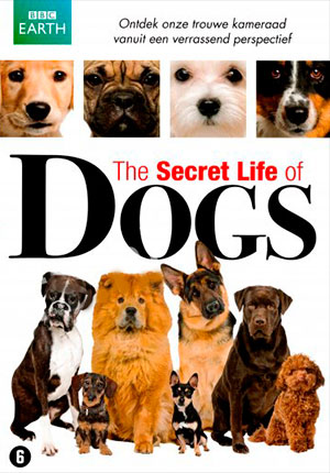 Тайная жизнь собак